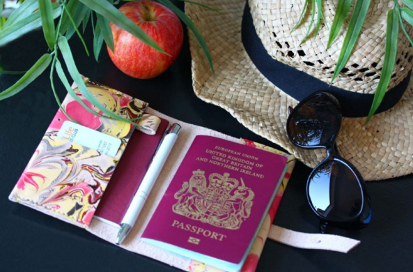 passport holder to help you stay organised while travelling