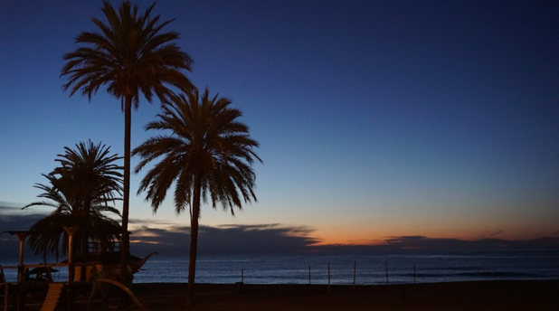 The Best Things To Do In Marbella, Spain graphic
